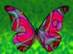 Butterfly: Lupus Adventurer's Blog Mascot