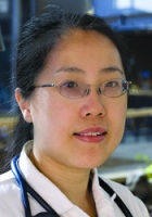 Dr. Amy H. Kao, Director of Biomedical Informatics at Lupus Center of Excellence at  WPAHS