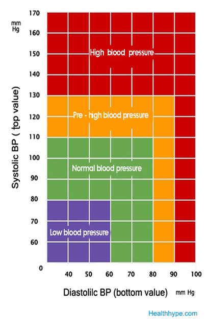 how much blood does a average adult have
